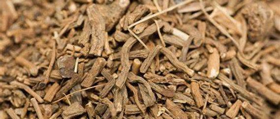 Valerian Root Capsules (sleep aid)