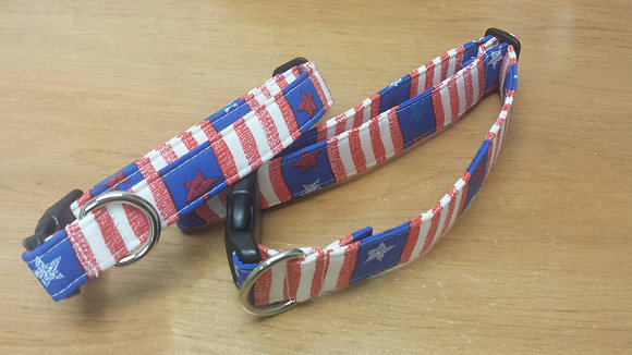 Flag Buckle Collar