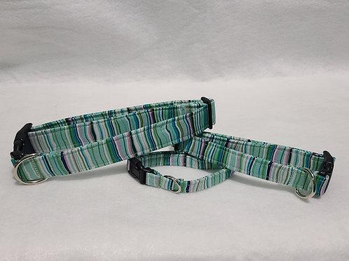 Green Stripe Buckle Collar