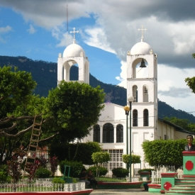 Mexican Oaxaco, ORGANIC