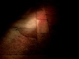 Illumination - Maxime Daviau
