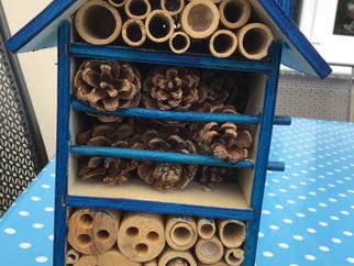Bau von Insektenhotels