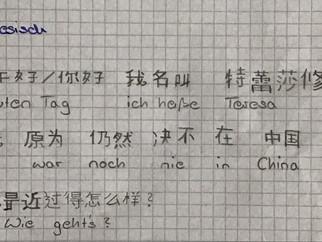 Nǐ hǎo TRS