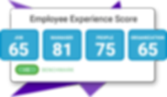 employee experience survey.png