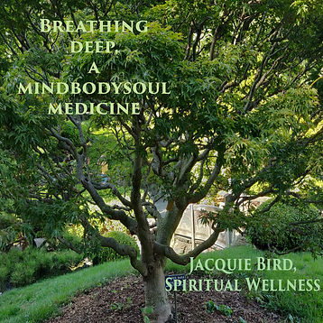Guided meditation and sound healing to help reduce stress and anxiety, contribute to wellness, well being and mindfulness