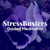 guided meditation for stress relief group