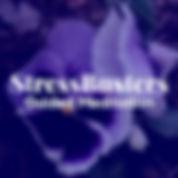 SBGM Logo edited large.jpg
