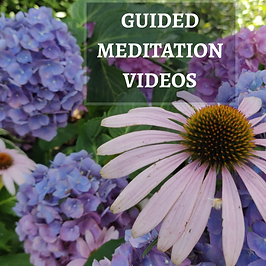 Guided Meditation Videos for Stress Reli
