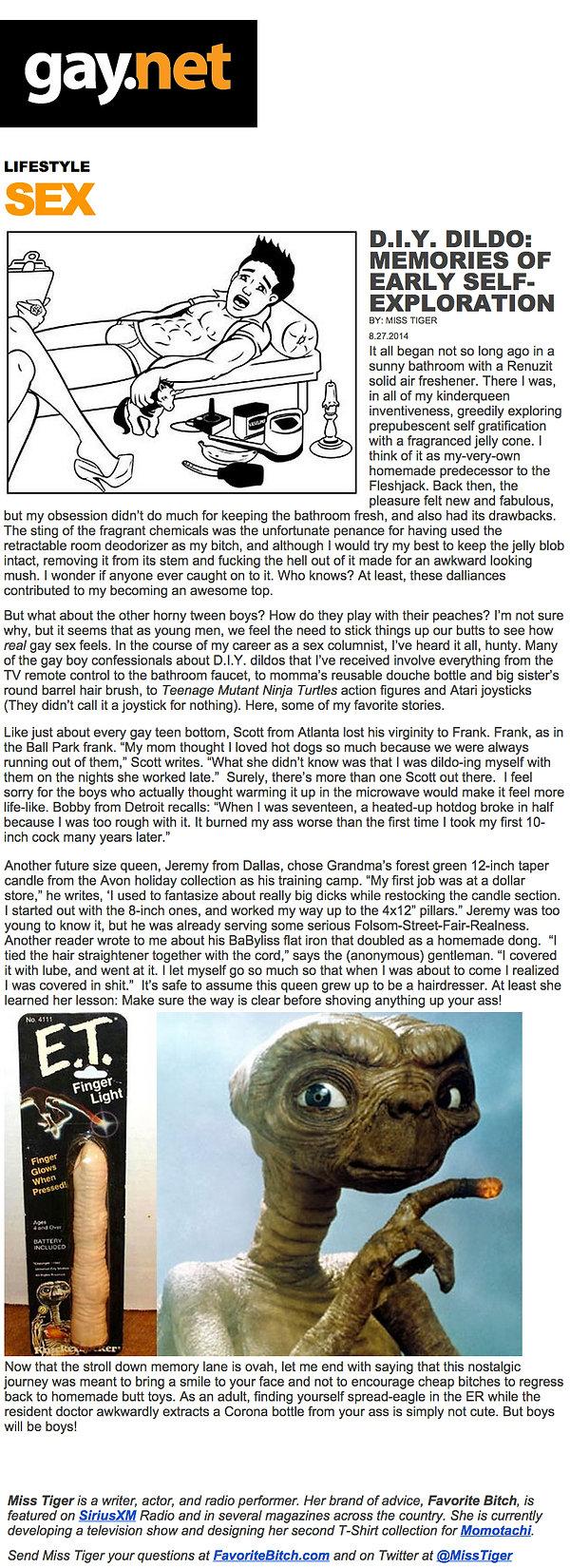gay.net-article.jpg