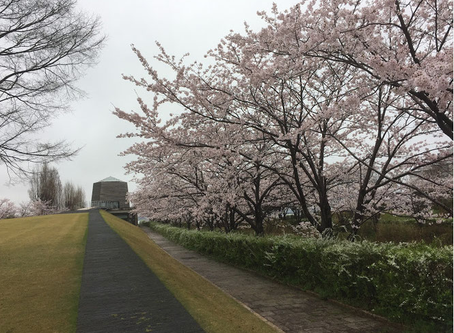 テレビ金沢主催のバスツアーで片山津へ行ってきました。(2017-4-16)