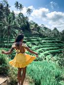 Tegalaland Rice Fields - Ubud