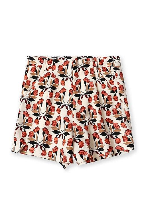 Printed Highwaist Casual Shorts