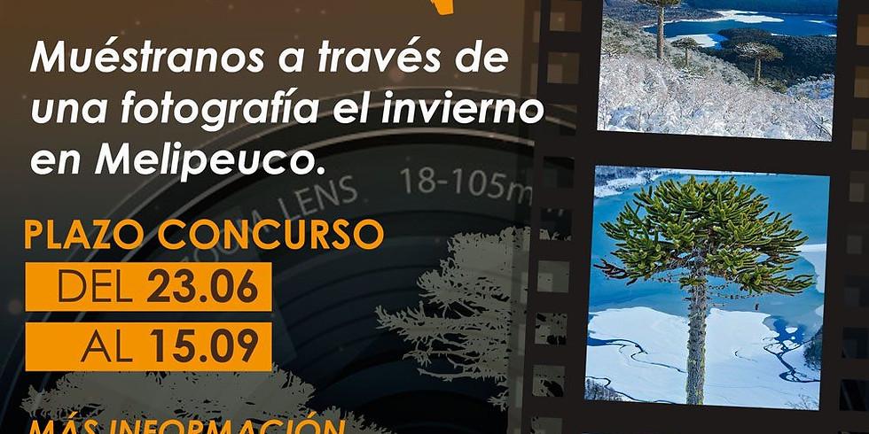 1° Concurso de fotografía invernal en Melipeuco.