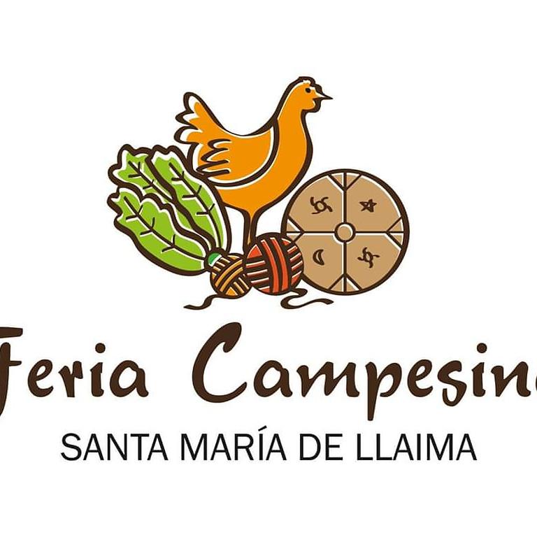 Fiesta Campesina de Santa María de Llaima