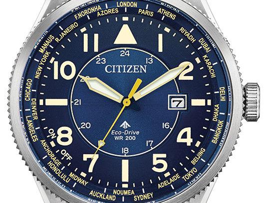 Citizen Avion Eco-Drive Brown Silver BX1010-11L Watch