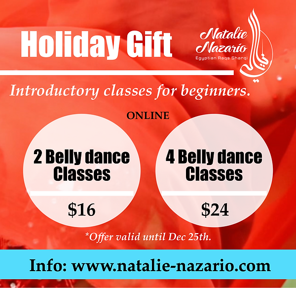 Holiday Gift -  Classes - Price.png