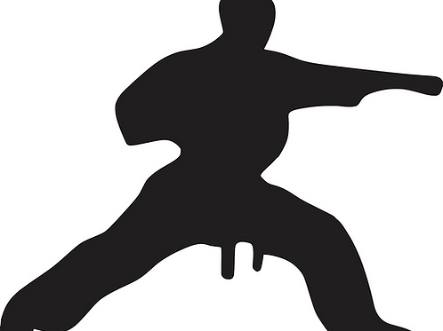 Karate Monthly (2 Class per week)