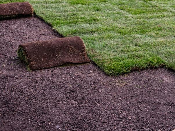 landscaping-rolling-sod.jpeg