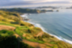 Kauri Cliffs Golf Tours Auckland North Shore Golf Coaching Lessons