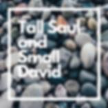 Tall Saul and Small David.png