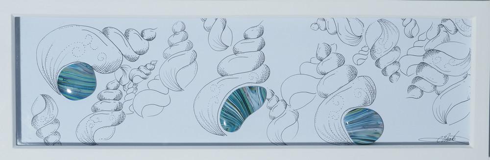 Sea Shells on the Seashore
