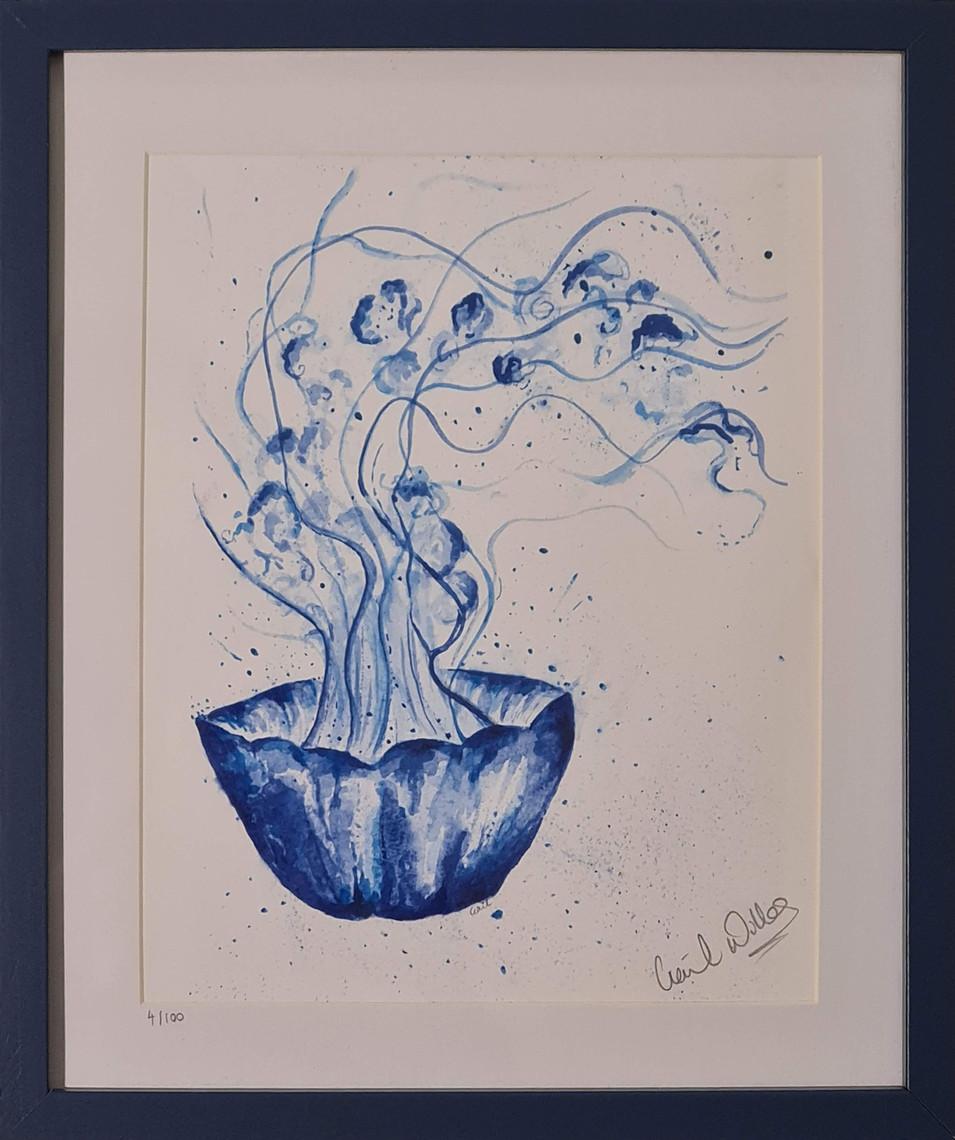 jelyfish in blue