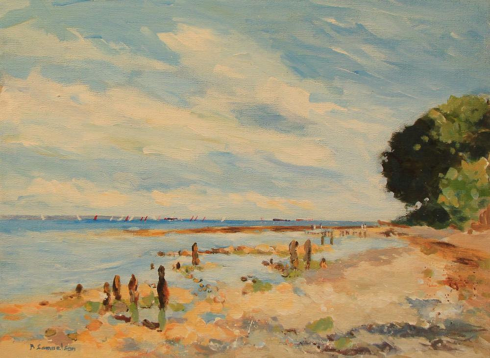 Bembridge Ducie Beach