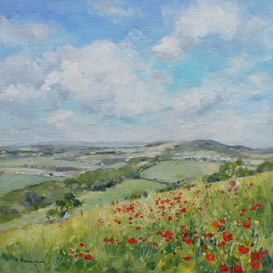 poppies on culver down