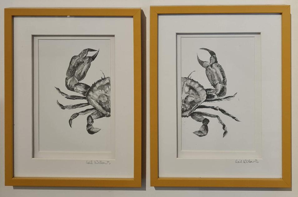split crab