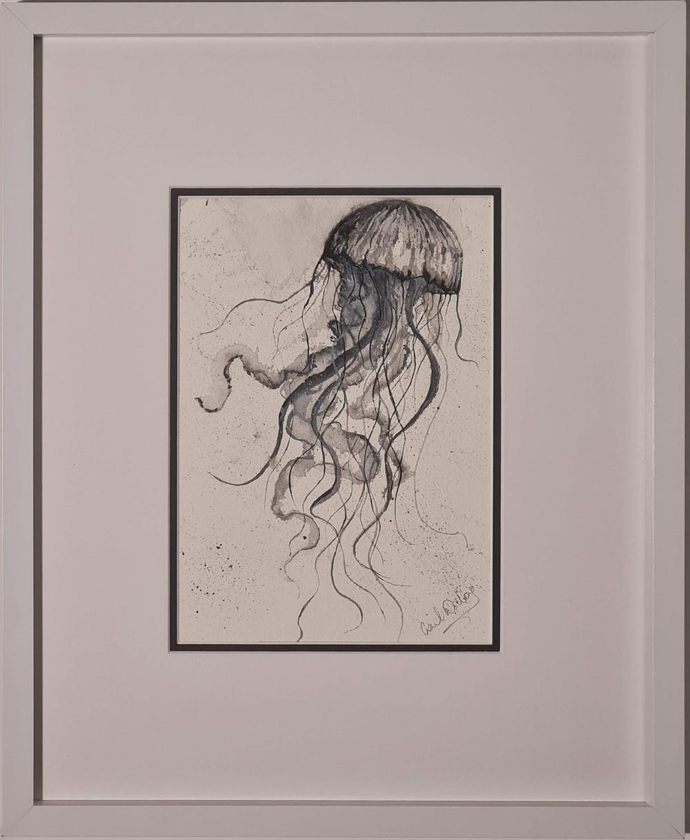 jellyfish i