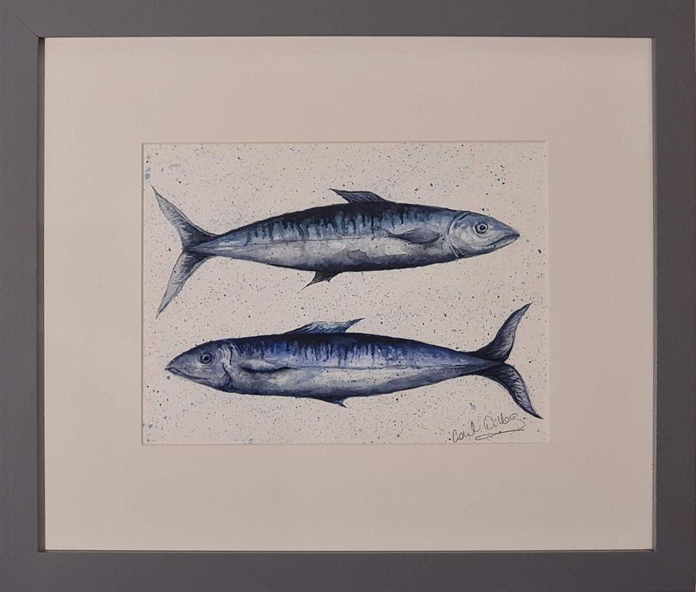 mackerel in blue