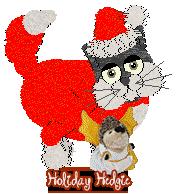 HolidayHedgie.png