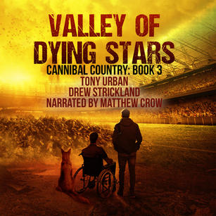 valley of dying stars audiobook cover.jp