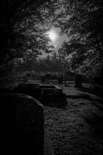 Samhain Collection 2