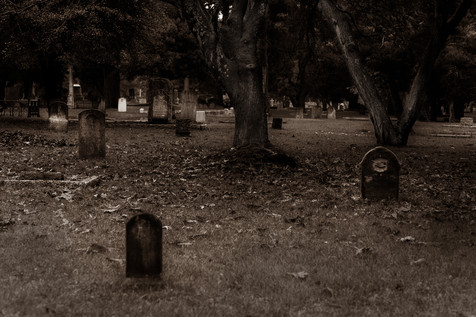 Samhain Collection 8