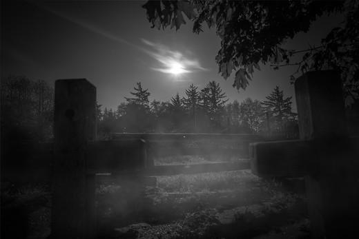 Samhain Collection 14