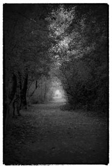 Samhain Collection 16