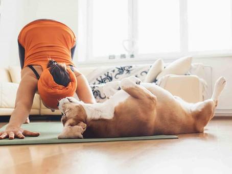 Free Yoga Goes Viral