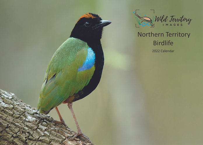 Northern Territory Birdlife: 2022 Calendar