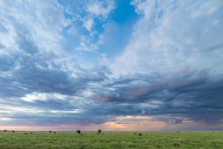 The Barkly Tablelands