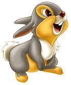 Thumper-1-lg.jpg