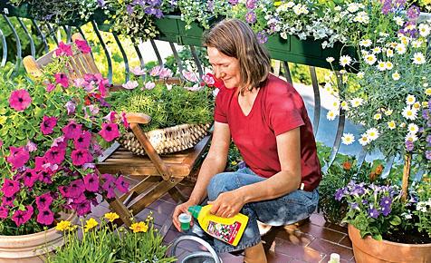 садоводов знакомство