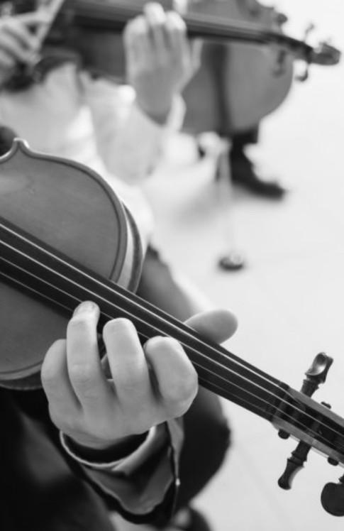 """""""Первая скрипка"""""""
