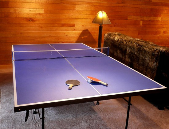 Game room with table tennis