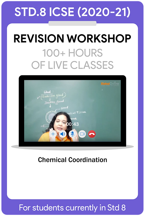 Std 8 ICSE 2021 Live Revision Workshop
