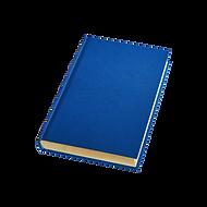 EI blue book.png