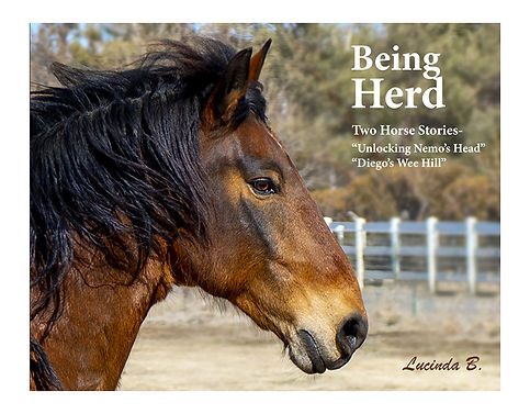 being_herd_front_cover_9.jpg