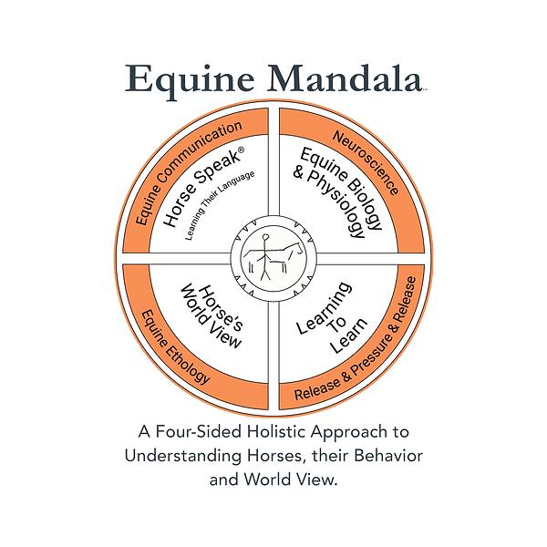 Mandala Description-F88F55.png