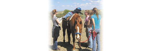 horse therapy- 2 gradients.jpg