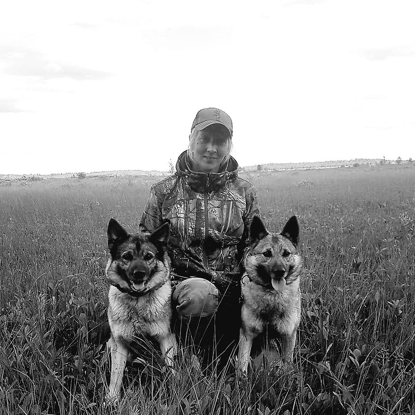 Inkallning - Älghundar